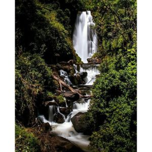 ★ CASCADA DE PEGUCHE – OTAVALO – IMBABURA  By : @l.j.g.photography  #Peguche #Otavalo #ProvinciaDeImbabura #DiscoverEcuador #EcuadorPotenciaTuristica #EcuadorIsAllyouNeed #EcuadorTuristico #EcuadorAmaLavida #EcuadorPrimero #Ecuador #SoClose #LikeNoWhereElse #ViajaPrimeroEcuador #AllInOnePlace #AllYouNeedIsEcuador #PaisajesEcuador #PaisajesEcuador593 #FeelAgainInEcuador #Love #Nature_Wizards #Nature_Perfections #Wow_America #World_Shots #WorldCaptures