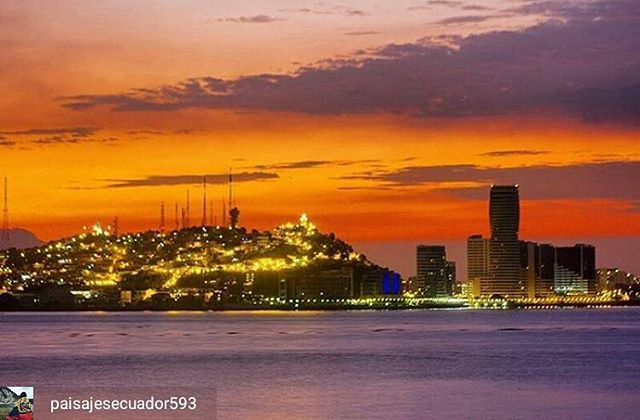 @Regrann from @paisajesecuador593 –  GUAYAQUIL – GUAYAS  By : @johngarcia98  #Guayaquil #ProvinciaDeGuayas #DiscoverEcuador #EcuadorPotenciaTuristica #EcuadorIsAllyouNeed #EcuadorTuristico #EcuadorAmaLavida #EcuadorPrimero #Ecuador #SoClose #LikeNoWhereElse #ViajaPrimeroEcuador #AllInOnePlace #AllYouNeedIsEcuador #PaisajesEcuador #PaisajesEcuador593 #FeelAgainInEcuador #Love #Nature_Wizards #Nature_Perfections #Wow_America #World_Shots #WorldCaptures #Regrann