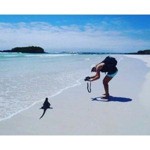 ★ ISLAS GALAPAGOS – ECUADOR 📷: @cynthia_navarrete_ #ecuadorysuspaisajes #islasgalapagos #lasgalapagos #tortugabay  #islasantacruz #ecuadoramalavida #ecuadorpotenciaturistica #ecuador #discoverecuador #allioneplace #nature_wizars #wow_america #wordlcapruras #soclose #likenowhereelse #amazonia #ecuadorprimero #travel #travelphotography #travelecuador #allyouneedisecuador #allecuadorneedsisyou #viajaprimeroecuador