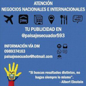 ★ Por medio de nuestro perfil podrás: ▪ Incrementar tus seguidores. ▪ Dar alcanze nacional a cualquier tipo de promoción y oferta de tu negocio.  COMUNÍCATE  #Quito #Guayaquil #Cuenca #Machala #Loja #Ambato #Ibarra #DiscoverEcuador #EcuadorPotenciaTuristica #EcuadorIsAllyouNeed #EcuadorTuristico #EcuadorAmaLavida #EcuadorPrimero #Ecuador #SoClose #LikeNoWhereElse #ViajaPrimeroEcuador #AllInOnePlace #AllYouNeedIsEcuador #FeelAgainInEcuador #PaisajesEcuador593 #PaisajesEcuador #Love #Nature_Wizards #Nature_Perfections #Wow_America #World_Shots #WorldCaptures