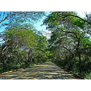★ PUERTO LOPEZ – MANABI  By : @bryanjose_  #PuertoLopez #ProvinciaDeManabi #DiscoverEcuador #EcuadorPotenciaTuristica #EcuadorIsAllyouNeed #EcuadorTuristico #EcuadorAmaLavida #EcuadorPrimero #Ecuador #SoClose #LikeNoWhereElse #ViajaPrimeroEcuador #AllInOnePlace #AllYouNeedIsEcuador #PaisajesEcuador #PaisajesEcuador593 #FeelAgainInEcuador #Love #Nature_Wizards #Nature_Perfections #Wow_America #World_Shots #WorldCaptures