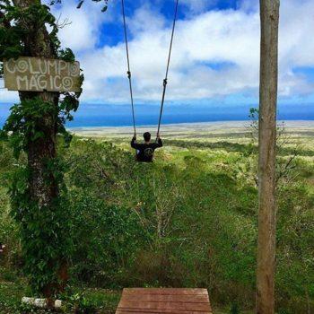 ★ COLUMPIO MAGICO – SANTA CRUZ – GALÁPAGOS  By : @3ric_connelly  #SantaCruz #Galápagos #DiscoverEcuador #EcuadorPotenciaTuristica #EcuadorIsAllyouNeed #EcuadorTuristico #EcuadorAmaLavida #EcuadorPrimero #Ecuador #SoClose #LikeNoWhereElse #ViajaPrimeroEcuador #AllInOnePlace #AllYouNeedIsEcuador #PaisajesEcuador #PaisajesEcuador593 #FeelAgainInEcuador #Love #Nature_Wizards #Nature_Perfections #Wow_America #World_Shots #WorldCaptures