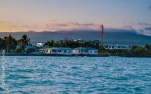 ★ GALÁPAGOS  By : @photography_nivek  #Galápagos #IslasGalapagos #DiscoverEcuador #EcuadorPotenciaTuristica #EcuadorIsAllyouNeed #EcuadorTuristico #EcuadorAmaLavida #EcuadorPrimero #Ecuador #SoClose #LikeNoWhereElse #ViajaPrimeroEcuador #AllInOnePlace #AllYouNeedIsEcuador #PaisajesEcuador #PaisajesEcuador593 #FeelAgainInEcuador #Love #Nature_Wizards #Nature_Perfections #Wow_America #World_Shots #WorldCaptures