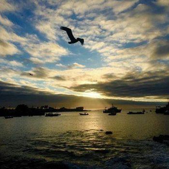 ★ PUERTO BAQUERIZO MORENO – GALÁPAGOS  By : @srzavala  #PuertoBaquerizoMoreno #Galápagos #DiscoverEcuador #EcuadorPotenciaTuristica #EcuadorIsAllyouNeed #EcuadorTuristico #EcuadorAmaLavida #EcuadorPrimero #Ecuador #SoClose #LikeNoWhereElse #ViajaPrimeroEcuador #AllInOnePlace #AllYouNeedIsEcuador #PaisajesEcuador #PaisajesEcuador593 #FeelAgainInEcuador #Love #Nature_Wizards #Nature_Perfections #Wow_America #World_Shots #WorldCaptures
