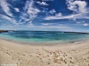 ★ PUNTA CAROLA – GALAPAGOS  By : @kebiin_bo  #PuntaCarola #Galapagos #DiscoverEcuador #EcuadorPotenciaTuristica #EcuadorIsAllyouNeed #EcuadorTuristico #EcuadorAmaLavida #EcuadorPrimero #Ecuador #SoClose #LikeNoWhereElse #ViajaPrimeroEcuador #AllInOnePlace #AllYouNeedIsEcuador #PaisajesEcuador #PaisajesEcuador593 #FeelAgainInEcuador #Love #Nature_Wizards #Nature_Perfections #Wow_America #World_Shots #WorldCaptures
