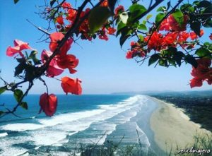 ★ OLON – SANTA ELENA  By : @erichviajero  #Olon #ProvinciaDeSantaElena #DiscoverEcuador #EcuadorPotenciaTuristica #EcuadorIsAllyouNeed #EcuadorTuristico #EcuadorAmaLavida #EcuadorPrimero #Ecuador #SoClose #LikeNoWhereElse #ViajaPrimeroEcuador #AllInOnePlace #AllYouNeedIsEcuador #PaisajesEcuador #PaisajesEcuador593 #FeelAgainInEcuador #Love #Nature_Wizards #Nature_Perfections #Wow_America #World_Shots #WorldCaptures