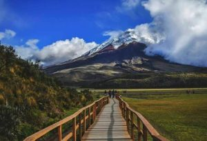 ★ PARQUE NACIONAL COTOPAXI  By : @santiagopph  #Cotopaxi #ProvinciaDeCotopaxi #DiscoverEcuador #EcuadorPotenciaTuristica #EcuadorIsAllyouNeed #EcuadorTuristico #EcuadorAmaLavida #EcuadorPrimero #Ecuador #SoClose #LikeNoWhereElse #ViajaPrimeroEcuador #AllInOnePlace #AllYouNeedIsEcuador #PaisajesEcuador #PaisajesEcuador593 #FeelAgainInEcuador #Love #Nature_Wizards #Nature_Perfections #Wow_America #World_Shots #WorldCaptures