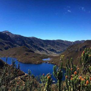 ★ PARQUE NACIONAL EL CAJAS - AZUAY  By : @lunacalvo  #ElCajas #ProvinciaDeAzuay #DiscoverEcuador #EcuadorPotenciaTuristica #EcuadorIsAllyouNeed #EcuadorTuristico #EcuadorAmaLavida #EcuadorPrimero #Ecuador #SoClose #LikeNoWhereElse #ViajaPrimeroEcuador #AllInOnePlace #AllYouNeedIsEcuador #PaisajesEcuador #PaisajesEcuador593 #FeelAgainInEcuador #Love #Nature_Wizards #Nature_Perfections #Wow_America #World_Shots #WorldCaptures