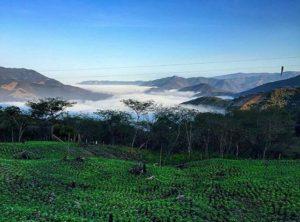★ MACARA – LOJA  By : @jnacho1984  #Macara #ProvinciaDeLoja #DiscoverEcuador #EcuadorPotenciaTuristica #EcuadorIsAllyouNeed #EcuadorTuristico #EcuadorAmaLavida #EcuadorPrimero #Ecuador #SoClose #LikeNoWhereElse #ViajaPrimeroEcuador #AllInOnePlace #AllYouNeedIsEcuador #PaisajesEcuador #PaisajesEcuador593 #FeelAgainInEcuador #Love #Nature_Wizards #Nature_Perfections #Wow_America #World_Shots #WorldCaptures