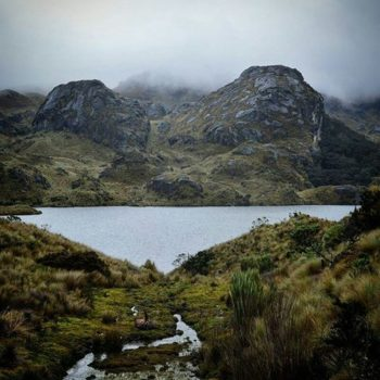 ★ EL CAJAS - AZUAY  By : @maycrib_photography  #ElCajas #ProvinciaDeAzuay #DiscoverEcuador #EcuadorPotenciaTuristica #EcuadorIsAllyouNeed #EcuadorTuristico #EcuadorAmaLavida #EcuadorPrimero #Ecuador #SoClose #LikeNoWhereElse #ViajaPrimeroEcuador #AllInOnePlace #AllYouNeedIsEcuador #PaisajesEcuador #PaisajesEcuador593 #FeelAgainInEcuador #Love #Nature_Wizards #Nature_Perfections #Wow_America #World_Shots #WorldCaptures