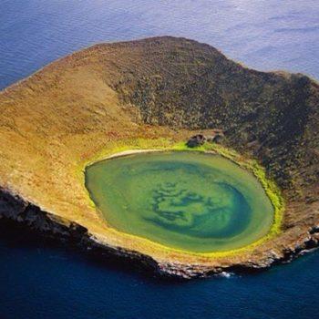 ★ GALÁPAGOS  By : @galapagosislands.ec  #Galapagos #DiscoverEcuador #EcuadorPotenciaTuristica #EcuadorIsAllyouNeed #EcuadorTuristico #EcuadorAmaLavida #EcuadorPrimero #Ecuador #SoClose #LikeNoWhereElse #ViajaPrimeroEcuador #AllInOnePlace #PaisajesEcuador593 #FeelAgainInEcuador #Love #Nature_Wizards #Nature_Perfections #Wow_America #World_Shots #WorldCaptures