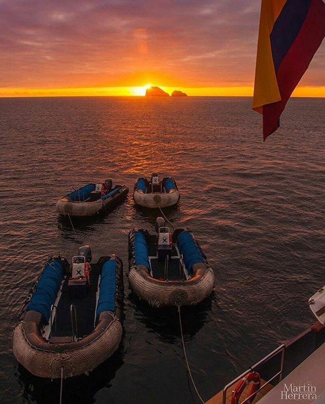 ★ ISLAS GALÁPAGOS  By : @6martin6herrera6  #Galápagos #DiscoverEcuador #EcuadorPotenciaTuristica #EcuadorIsAllyouNeed #EcuadorTuristico #EcuadorAmaLavida #EcuadorPrimero #Ecuador #SoClose #LikeNoWhereElse #ViajaPrimeroEcuador #AllInOnePlace #AllYouNeedIsEcuador #PaisajesEcuador #PaisajesEcuador593 #FeelAgainInEcuador #Love #Nature_Wizards #Nature_Perfections #Wow_America #World_Shots #WorldCaptures