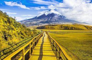 ★ PARQUE NACIONAL COTOPAXI  By : @ecuadortravels  #ParqueNacionalCotopaxi #ProvinciaDeCotopaxi #DiscoverEcuador #EcuadorPotenciaTuristica #EcuadorIsAllyouNeed #EcuadorTuristico #EcuadorAmaLavida #EcuadorPrimero #Ecuador #SoClose #ViajaPrimeroEcuador #AllInOnePlace #AllYouNeedIsEcuador #PaisajesEcuador #PaisajesEcuador593 #FeelAgainInEcuador #Love #Nature_Wizards #Nature_Perfections #Wow_America #World_Shots #WorldCaptures