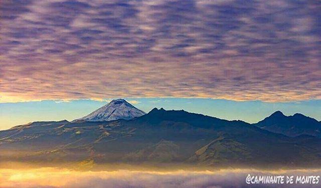 ★ AMANECER JUNTO AL COTOPAXI  By : @caminante.de.montes  #Cotopaxi #ProvinciaDeCotopaxi #DiscoverEcuador #EcuadorPotenciaTuristica #EcuadorIsAllyouNeed #EcuadorTuristico #EcuadorAmaLavida #EcuadorPrimero #Ecuador #SoClose #LikeNoWhereElse #ViajaPrimeroEcuador #AllInOnePlace #AllYouNeedIsEcuador #PaisajesEcuador #PaisajesEcuador593 #FeelAgainInEcuador #Love #Nature_Wizards #Nature_Perfections #Wow_America #World_Shots #WorldCaptures