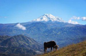 ★ VOLCÁN CHIMBORAZO VISTO DESDE SAN MIGUEL – BOLIVAR  By : @italoflores76  #Chimborazo #SanMiguel #ProvinciaDeBolivar #DiscoverEcuador #EcuadorPotenciaTuristica #EcuadorIsAllyouNeed #EcuadorTuristico #EcuadorAmaLavida #EcuadorPrimero #Ecuador #SoClose #LikeNoWhereElse #ViajaPrimeroEcuador #AllInOnePlace #AllYouNeedIsEcuador #PaisajesEcuador #PaisajesEcuador593 #FeelAgainInEcuador #Love #Nature_Wizards #Nature_Perfections #Wow_America #World_Shots #WorldCaptures
