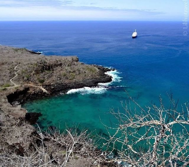 ★ CERRO TIJERETAS – GALÁPAGOS  By : @lilihutravel  #Galápagos #DiscoverEcuador #EcuadorPotenciaTuristica #EcuadorIsAllyouNeed #EcuadorTuristico #EcuadorAmaLavida #EcuadorPrimero #Ecuador #SoClose #LikeNoWhereElse #ViajaPrimeroEcuador #AllInOnePlace #AllYouNeedIsEcuador #PaisajesEcuador #PaisajesEcuador593 #FeelAgainInEcuador #Love #Nature_Wizards #Nature_Perfections #Wow_America #World_Shots #WorldCaptures