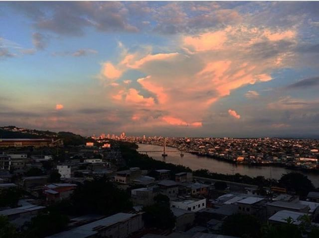 ★ GUAYAQUIL - GUAYAS  By : @clari77a  #Guayaquil #ProvinciaDeGuayas #DiscoverEcuador #EcuadorPotenciaTuristica #EcuadorIsAllyouNeed #EcuadorTuristico #EcuadorAmaLavida #EcuadorPrimero #Ecuador #SoClose #LikeNoWhereElse #ViajaPrimeroEcuador #AllInOnePlace #AllYouNeedIsEcuador #PaisajesEcuador #PaisajesEcuador593 #FeelAgainInEcuador #Love #Nature_Wizards #Nature_Perfections #Wow_America #World_Shots #WorldCaptures