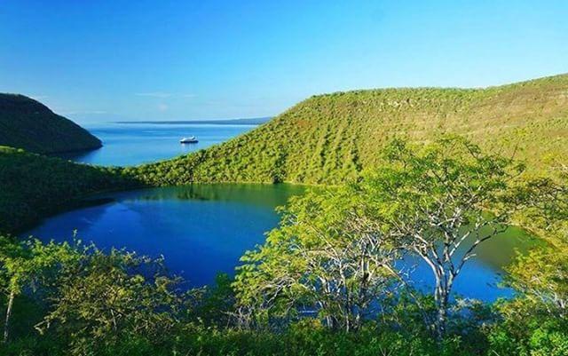 ★ ISLAS GALÁPAGOS  By : @pohpoh888  #Galápagos #DiscoverEcuador #EcuadorPotenciaTuristica #EcuadorIsAllyouNeed #EcuadorTuristico #EcuadorAmaLavida #EcuadorPrimero #Ecuador #SoClose #LikeNoWhereElse #ViajaPrimeroEcuador #AllInOnePlace #AllYouNeedIsEcuador #PaisajesEcuador #PaisajesEcuador593 #FeelAgainInEcuador #Love #Nature_Wizards #Nature_Perfections #Wow_America #World_Shots #WorldCaptures