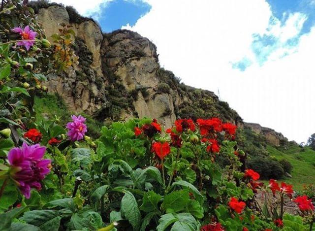 ★ CARA DEL INCA - INGAPIRCA - CAÑAR  By : @jhulyliz  #Ingapirca #ProvinciaDeCañar #DiscoverEcuador #EcuadorPotenciaTuristica #EcuadorIsAllyouNeed #EcuadorTuristico #EcuadorAmaLavida #EcuadorPrimero #Ecuador #SoClose #LikeNoWhereElse #ViajaPrimeroEcuador #AllInOnePlace #AllYouNeedIsEcuador #PaisajesEcuador #PaisajesEcuador593 #FeelAgainInEcuador #Love #Nature_Wizards #Nature_Perfections #Wow_America #World_Shots #WorldCaptures