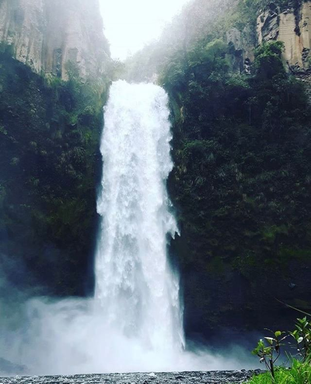 ★ CASCADA DEL RÍO PITA - SANGOLQUÍ - PICHINCHA  By : @ginette_veas  #Sangolquí #ProvinciaDePichincha #EcuadorPotenciaTuristica #EcuadorIsAllyouNeed #EcuadorTuristico #EcuadorAmaLavida #EcuadorPrimero #Ecuador #SoClose #LikeNoWhereElse #ViajaPrimeroEcuador #AllInOnePlace #AllYouNeedIsEcuador #PaisajesEcuador #PaisajesEcuador593 #FeelAgainInEcuador #Love #Nature_Wizards #Nature_Perfections #Wow_America #World_Shots #WorldCaptures