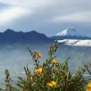 ★ COTOPAXI DESDE EL CORAZÓN  By : @sergiogilbert  #Cotopaxi #Corazón #ProvinciaDeCañar #EcuadorPotenciaTuristica #EcuadorIsAllyouNeed #EcuadorTuristico #EcuadorAmaLavida #EcuadorPrimero #Ecuador #SoClose #LikeNoWhereElse #ViajaPrimeroEcuador #AllInOnePlace #AllYouNeedIsEcuador #PaisajesEcuador #PaisajesEcuador593 #FeelAgainInEcuador #Love #Nature_Wizards #Nature_Perfections #Wow_America #World_Shots #WorldCaptures