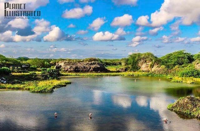 ★ ISABELA – GALÁPAGOS  By : @planetillustrated  #Isabela #Galápagos #EcuadorPotenciaTuristica #EcuadorIsAllyouNeed #EcuadorTuristico #EcuadorAmaLavida #EcuadorPrimero #Ecuador #SoClose #LikeNoWhereElse #ViajaPrimeroEcuador #AllInOnePlace #AllYouNeedIsEcuador #PaisajesEcuador #PaisajesEcuador593 #FeelAgainInEcuador #Love #Nature_Wizards #Nature_Perfections #Wow_America #World_Shots #WorldCaptures