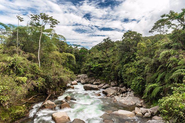 Sarayacu, Napo, Ecuador Foto Destacada por: @antonio.studio.foto | SARAYACU River in the Reserva Ecológica Antisana. Tena-Ecuador. Tha...