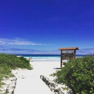 TORTUGA BAY - GALÁPAGOS  By : @hannah.lessmann  #TortugaBay #Galápa...