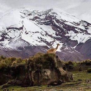 Chimborazo Province 📷:@majo90_photo  #E