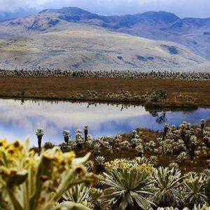 @ecuadorentusojos PRESENTA:  PARQUE NACIONAL EL CAJAS - PROV