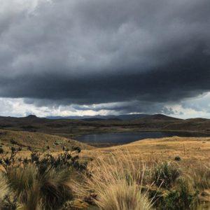 Llanganates National Park 📷:@ecuadorysuspaisaj