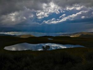 Llanganates National Park 📷:@ellienuez #Ecuado