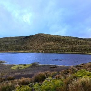 Cotopaxi National Park 📷:@ecuadorysuspaisaj