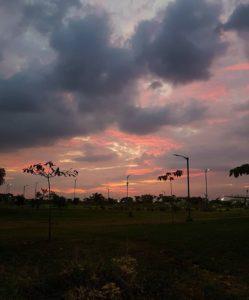 Parque Samanes  Concha Acustica Levanta la mirada, observa a tu alrededor  siempre habrá algo hermoso que ver.. 🔹️Ata