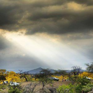 Mangahurco Cuando la naturaleza pone lo divino  a tu foto. Florecimiento de los guayacanes en Za