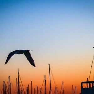 Port Vell Barcelona. #cdmx #photography #paisaje #nature #paisajedf #paisajes #landsc