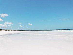 Playa Tortuga Bay 🎶 vamos a vivir en una casita frente al maaar 🍍 . . . . . . #earthday #happyearthday