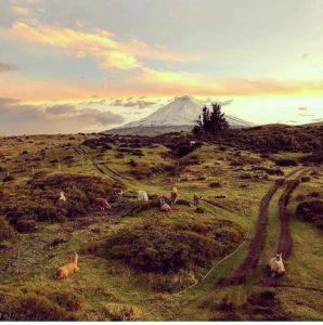 Foto: @johsvabal  #FotografiandoEcuador #ecuadorpotenciaturística #ecuadoramalavida