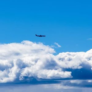 Cuantos sueños van o regresan en ese vuelo? Visita desde la laguna de secas. . #Georg